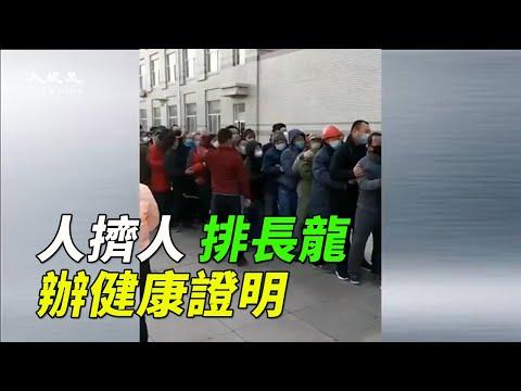 """【现场视频】人挤人! 为复工山东排队办""""健康证"""""""