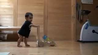 Кошка учит ребенка ходить...
