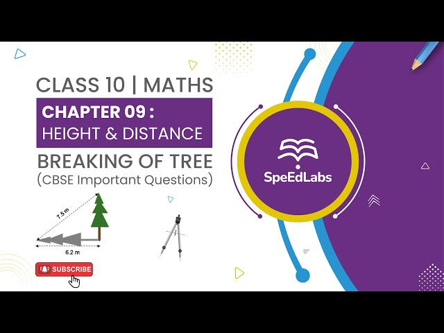 Class 10 Maths Chapter 09: Height & Distance | Breaking of tree | CBSE Important Questions
