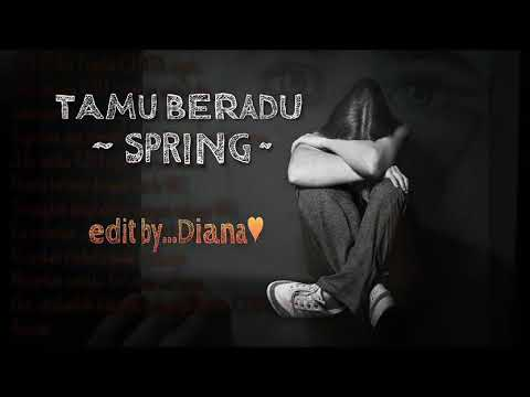 Tamu Beradu (lirik) - Spring