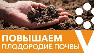 Как сделать почву плодородной? Прямой эфир с биологом Иваном Русских