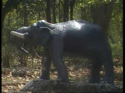 Dalma Wild Life Tour-1_Dalma Wildlife sanctuary jamshedpur  jharkhand