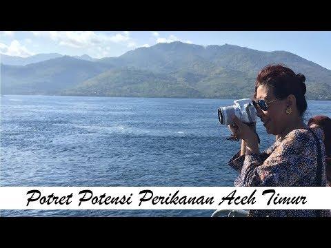 Fishery Potency in East Aceh Potensi Sektor Perikanan Aceh Timur