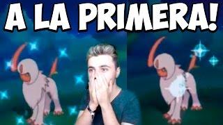LE SALEN 2 SHINY SEGUIDOS A LA PRIMERA!!!!