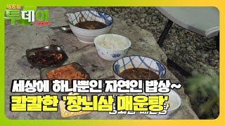 '장뇌삼 매운탕' 세상에서 단 하나뿐인 자연인의 밥상!…