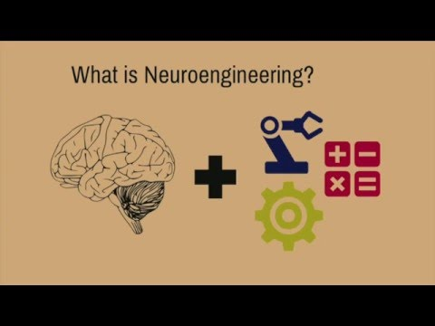"Introduction to ""Neuroengineering: Where Biology Meets Technology"" (PhD Candidate Kait Folweiler)"