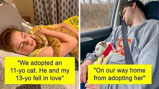 Most Wholesome Rescue Pet Photos