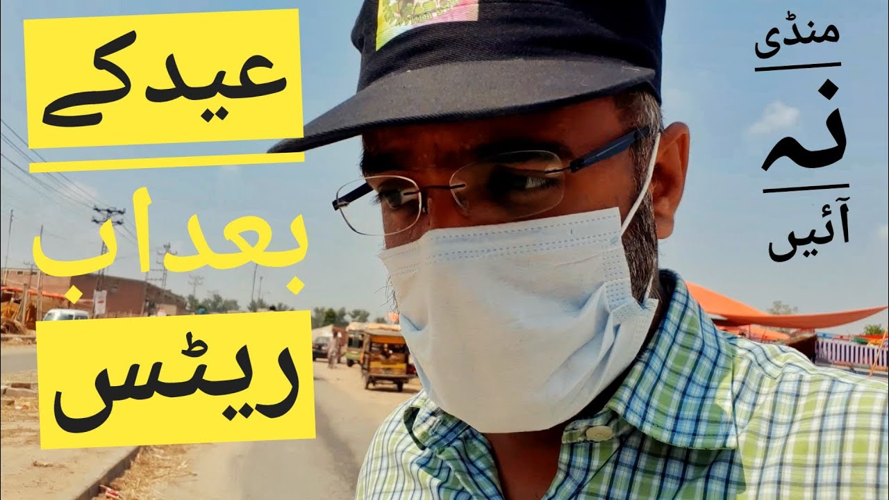 Lahore Bakra Mandi After Bakra Eid 2020 Kajla Chatra Rates - Bakra Mandi Pakistan