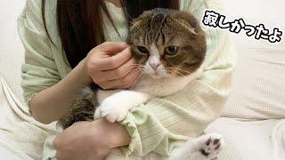 甘えん坊猫を放ったらかしてトイレ掃除をしていたら外ではこうなっていました…泣
