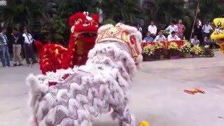 cambodia lion dance