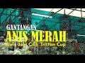 Gantangan Anis Merah Piala Joki Cilik Tristan Cup G T Enterprise Pondok Cabe By Hobi Id  Mp3 - Mp4 Download