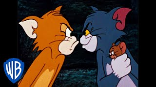 Tom and Jerry | The Dog & Cat Switcharoo | Classic Cartoon Compilation | WB Kids
