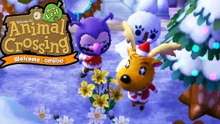 Acnl ask about a present