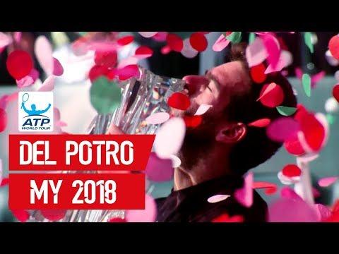 Juan Martin Del Potro | The Story Of His 2018 ATP Tour Season