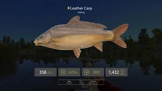 Feederezés Macin - Feeder Fishing on Bear Lake | Guide