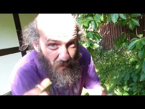 Freetopia Vlog 126 Eis Schloss Für unser Hühnergehege und Garten ;)