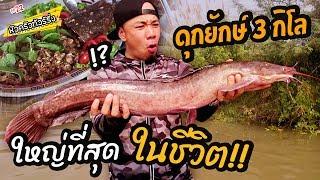 ปลาดุกยักษ์-โคตรใหญ่-หนัก-3kg-หัวครัวทัวร์ริ่ง-ep-26
