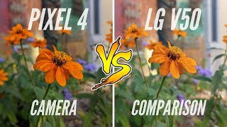 Google Pixel 4 XL vs. LG V50 ThinQ 5G Camera Comparison
