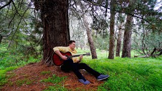 playing guitar in a forest