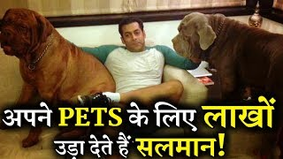 Salman Khan's Crazy Love For His Dogs Will Shock You