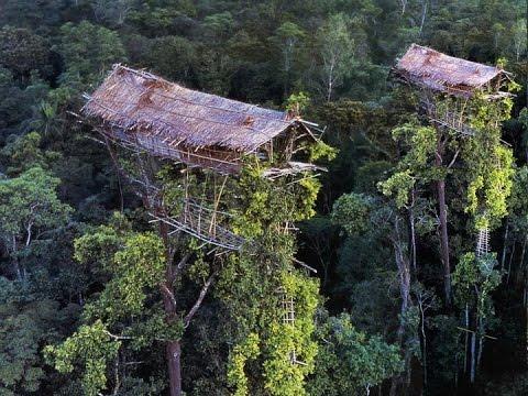 Begini Kehidupan Suku Pemakan Manusia di Pedalaman Papua - Seri Keajaiban Dunia