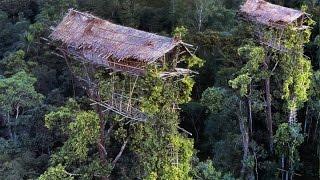 Begini Kehidupan SukuKanibaI Pemakan Manusia di Pedalaman Papua - Keajaiban Dunia Nyata - Stafaband