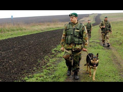 картинки пограничные войска
