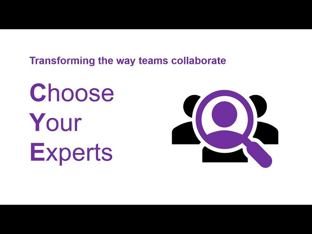 Choose Your Experts Tutorial
