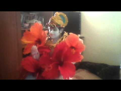 SREESUKTA Webcam video from February 22, 2013 11:09 AM