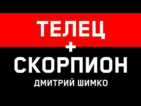 ТЕЛЕЦ+СКОРПИОН - Совместимость - Астротиполог Дмитрий Шимко