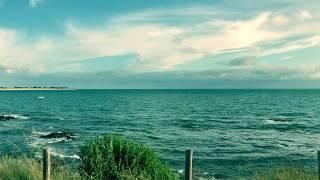 Sous le soleil de Mexico - Jeanne Plante