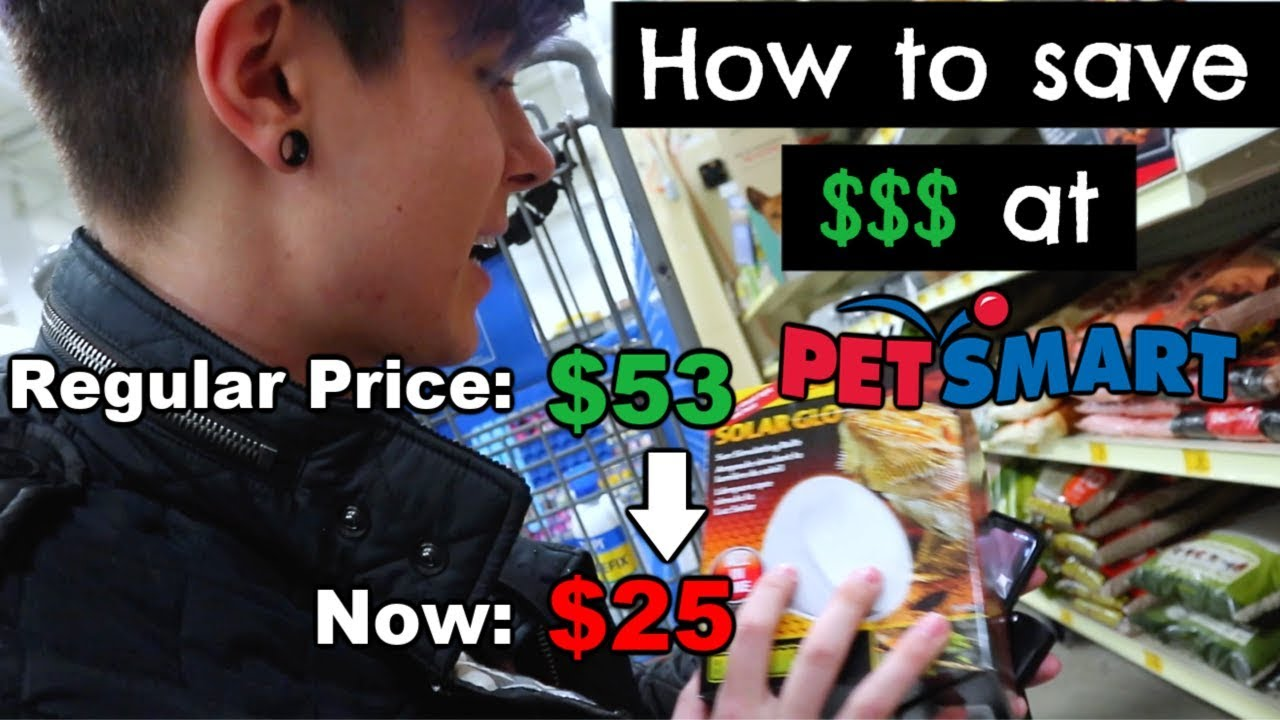 how-i-saved-80-in-1-trip-to-petsmart-shopping-for-fish-birds-rabbits-and-reptiles