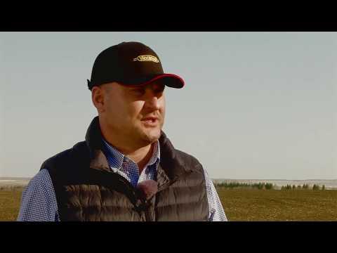 Агрофирма «Нижегородская», крупнейший производитель сахарной свеклы в Нижегородской области