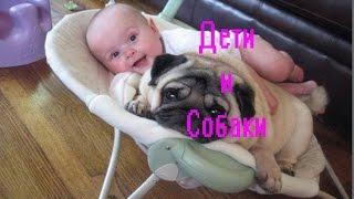 Дети и собаки.Стоит ли заводить собаку если в семье есть маленький ребенок.