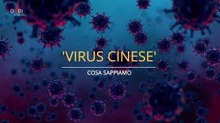 Virus Cinese, Sintomi E Diffusione: Cosa Sappiamo
