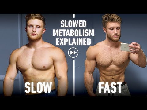 Why We Get Slow Metabolisms & Should You Reverse Diet? Science Discussion ft. Dr. Eric Trexler