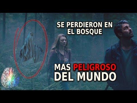 Hoia Baciu - El Bosque mas PELIGROSO del MUNDO
