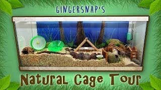 Gingersnap's Natural Cage Tour - March 2014