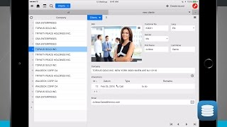 Ninox Database iPad App Demo