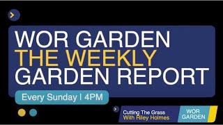 WOR GARDEN - The Weekly Garden Report - Episode 7   Cutting the grass
