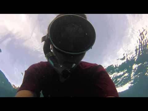 Marshall island under water world