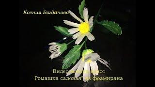 Ромашка садовая из фоамирана видео мастер-класс flowers fom