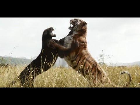 Bagheera contro Shere Khan e la fuga di Mowgli-Il Libro della Giungla(2016).