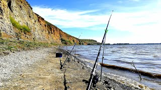 Рыбалка на Дону ЭТИ ДУРАКИ ОТРЫВАЮТ И РАЗГИБАЮТ КРЮЧКИ!!! СНАСТЬ УБИЙЦА САЗАНА