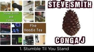 Steve Smith and Conga J - Pine Needle Tea (album - FULL) 2014