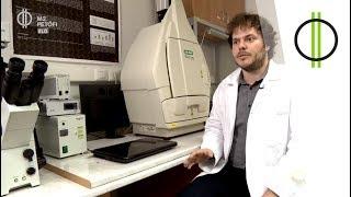 Gyógyíthatatlan betegségek titkos megoldókulcsa