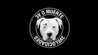 3VELOCIDADES - TONTO RETONTO (LP 3VOMUERTE)