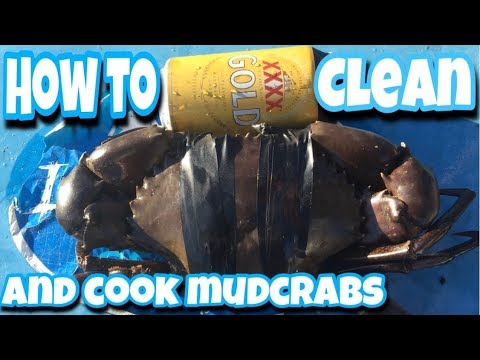 HOW TO CLEAN & COOK MUDCRABS. The Professional Australian Way.