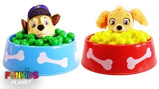 Poppy Trolls & Paw Patrol Dog Food Bowl Full of Magical Gumballs