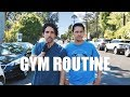 How To Start A Gym Routine